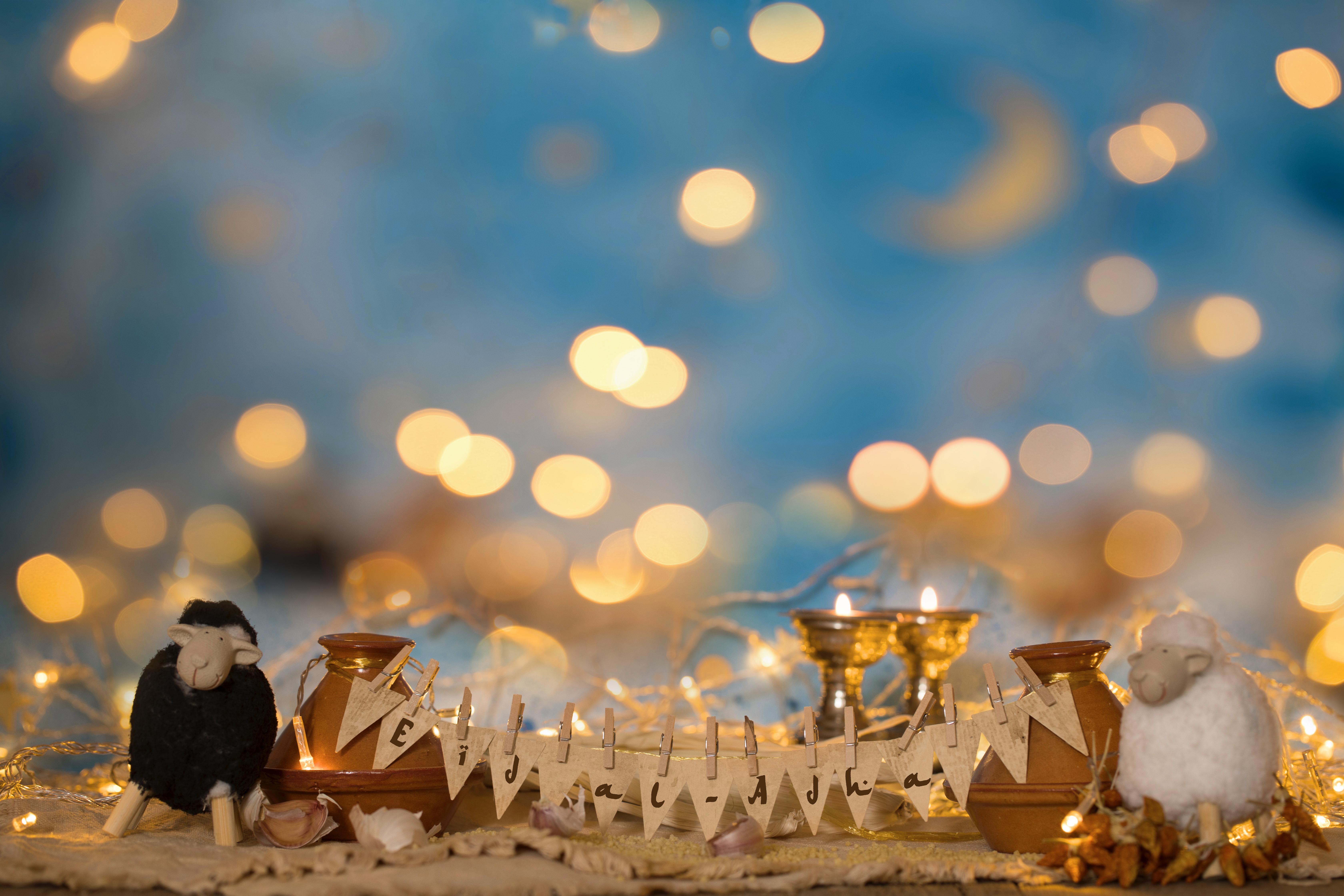 Eid al Adha template banner with bokeh lights and sheep figurines